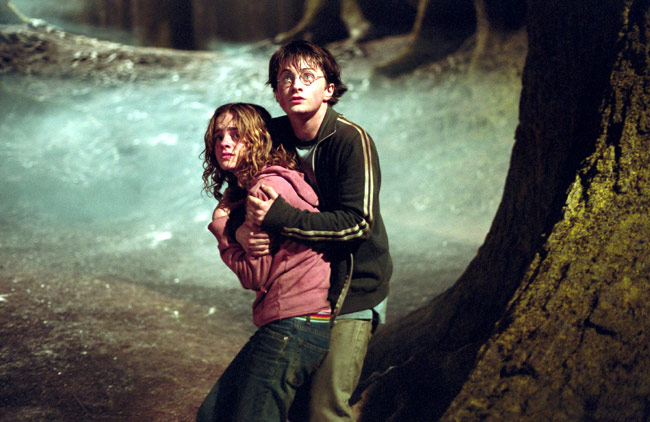 harry / hermione